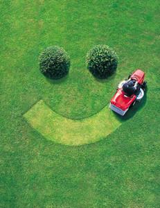 fun-lawn-care